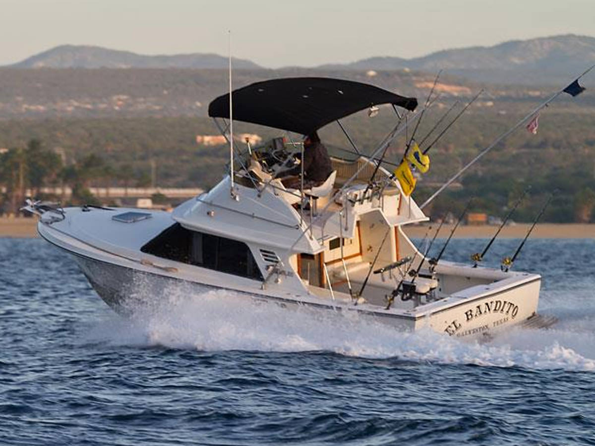 29 ft Blackfin Sportfisher