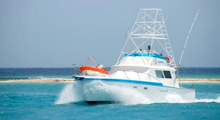 Cabo San Lucas Boat, Yacht & Fishing Charters
